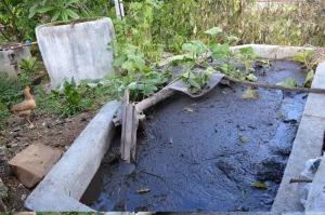 _1-Cuba-biogas21